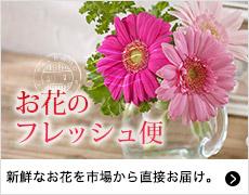 お花のフレッシュ便
