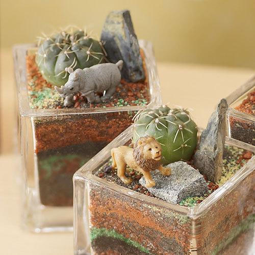 ちいさな植物と一緒に楽しむジオラマ「サバンナのライオンたち」ミニサイズ3個セット