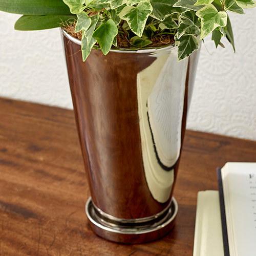 ミディ胡蝶蘭観葉寄せ2本立ち「リンリン」