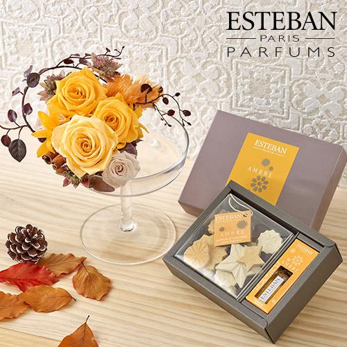 香りを楽しむギフト ESTEBAN「アンバー」とアロマディッシャーのセット