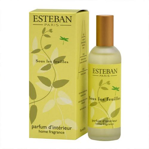 香りを楽しむギフト ESTEBAN「グリーンノート ルームスプレー」とアーティフィシャルフラワーのセット