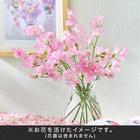 旬の花材「スイートピー」