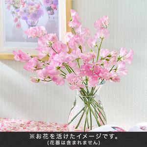 旬の花材「スイートピー」の商品画像
