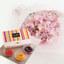 花紀行南九州「スイートピー(恋式部)50本」と日本の果実ゼリーセット