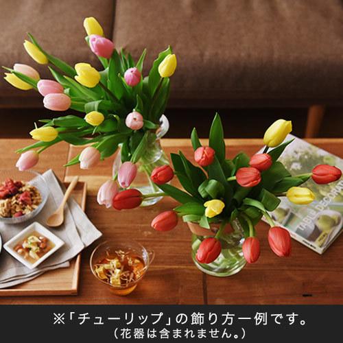 花紀行北陸「チューリップ30本(品種おまかせ3種ミックスカラー)」