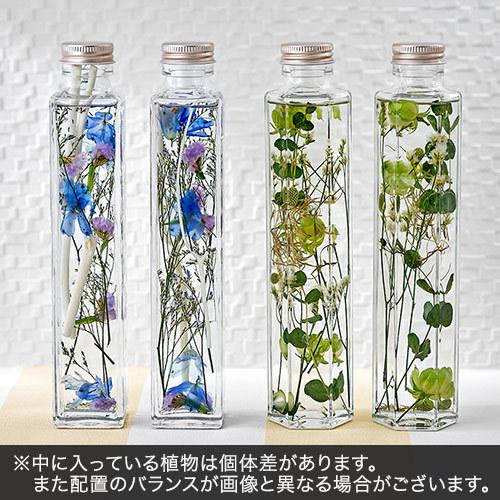 Healing Bottle「Sky&Earth」2本セット【沖縄届不可】