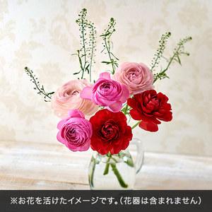 旬の花材「ラナンキュラス」の商品画像