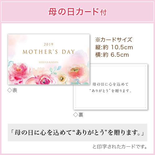 母の日 ヒビヤカダンスイーツ「バラ香るローズブッセ」とアレンジメントのセット