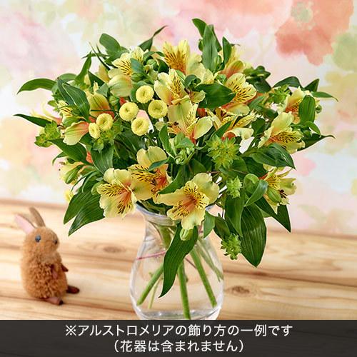 旬の花材「アルストロメリア イエロー系」
