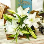 父の日 花束「カサブランカ」