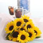 父の日 花紀行房総「夏の水出しコーヒーギフトとヒマワリ」のセット