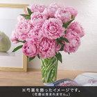 おうちで楽しむ季節の花「芍薬(淡いピンク系)」12本
