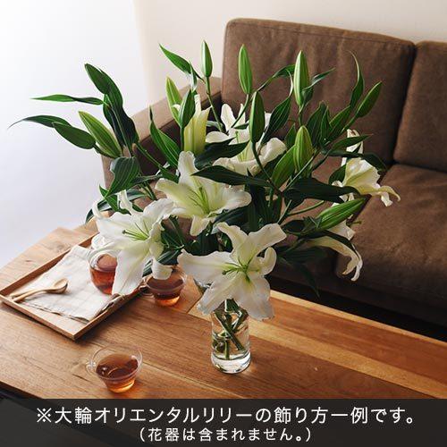 花紀行北海道「夕張メロンプレミアムゼリーと大輪ユリ(白)」のセット