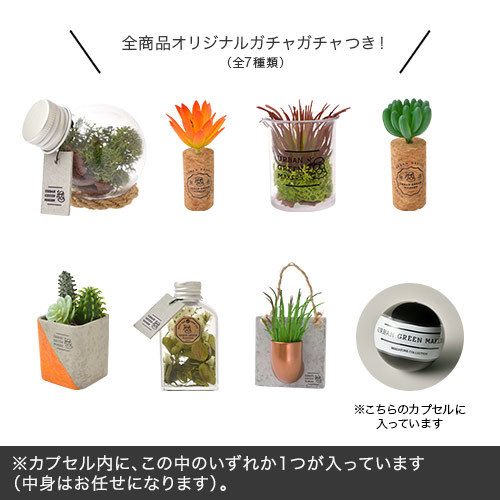 URBAN GREEN MAKERS グリーンアートキット「メン」