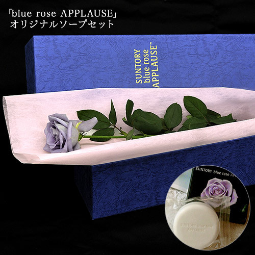 blue rose APPLAUSE BOX(1本入り)&オリジナルソープ