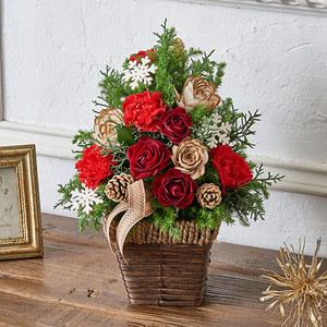 クリスマス アレンジメント「サパンドノエル」の商品画像