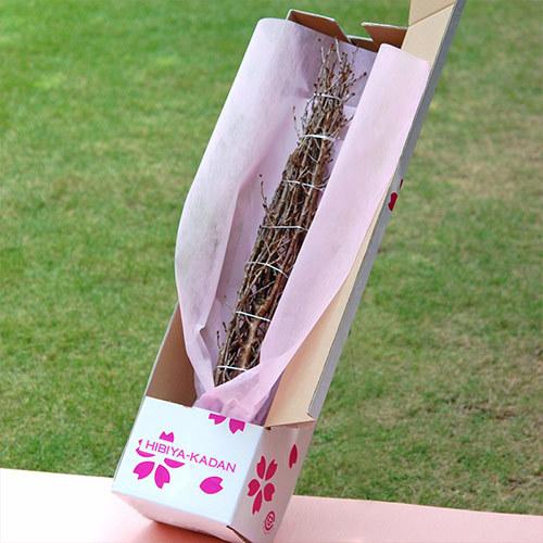 桜とフラワーベースのセット