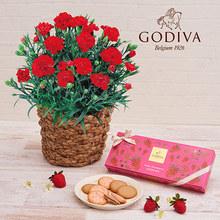 母の日 ゴディバ「あまおう苺クッキー アソートメント」とカーネーション鉢のセット