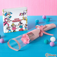 母の日 ディズニー「お花も飾れるキャンバスフレームとお花のセット(ミッキー&フレンズ)」