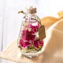 母の日 Healing Bottle「カーネーション」【沖縄届不可】