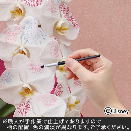 ディズニー ミディ胡蝶蘭「化粧蘭(Mickey)」
