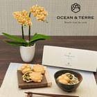 父の日 OCEAN&TERRE「お茶漬け最中セット」とラン鉢のセット