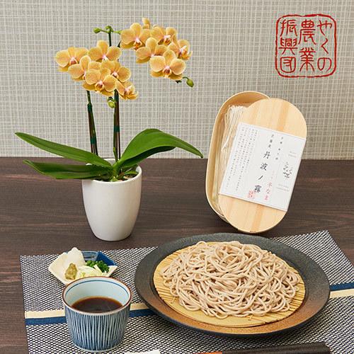 父の日 京蕎麦「丹波ノ霧 半なま蕎麦」とラン鉢のセット