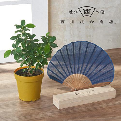 父の日 西川庄六商店「ガーゼ素材のふわり扇子(こいあい)」と観葉植物フィカス「ナナ」のセット