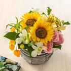 7月の旬の花 アレンジメント「マルゴー」