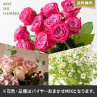 【バイヤー厳選】ローズミックス(5/23〜6/12お届け)