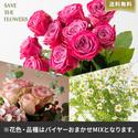 【バイヤー厳選】ローズミックスL(5/23〜6/12お届け)