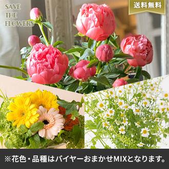 【バイヤー厳選】季節のお花・おまかせミックスL(5/23〜6/12お届け)