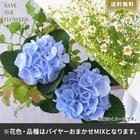 【バイヤー厳選】季節のお花・おまかせミックスL(6/22〜6/28お届け)