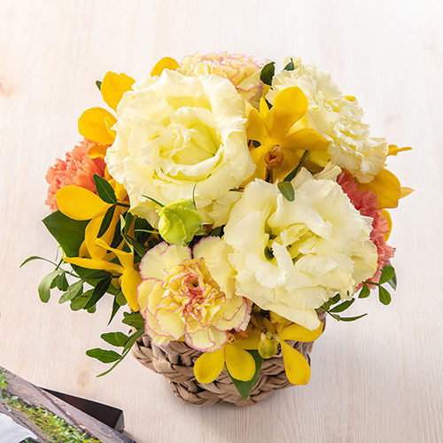 8月の旬の花 アレンジメント「ラフィネット」