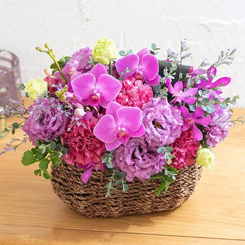 【日比谷花壇】8月の旬の花 アレンジメント「パレルモ」 (アレンジメント) | 母の日プレゼント