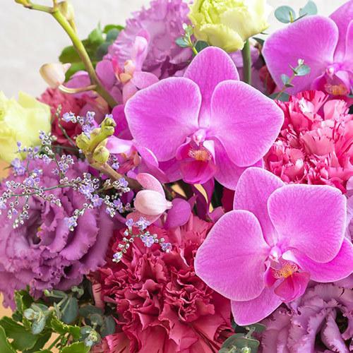 8月の旬の花 アレンジメント「パレルモ」