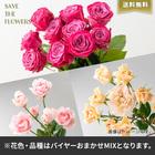 【バイヤー厳選】ローズミックスL(7/6〜7/12お届け)