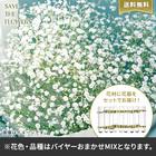 【バイヤー厳選】季節のお花・おまかせミックス花瓶セット(7/6〜7/12お届け)