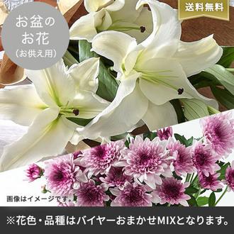 お盆のお花(バイヤー厳選おまかせミックス)