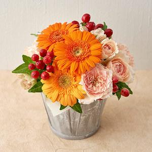 10月の旬の花 アレンジメント「シアーオレンジ」の商品画像