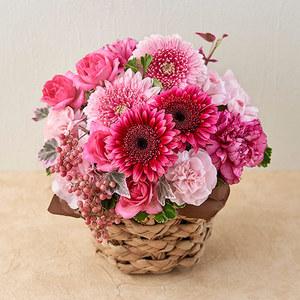 10月の旬の花 アレンジメント「カリーニョ」の商品画像