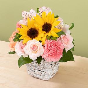 7月の旬の花 アレンジメント「マルゴー」の商品画像