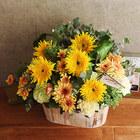【お供え用】 O・SO・NA・E flower 「7月のウッドボックスアレンジメント」