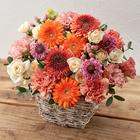 10月の旬の花 アレンジメント「メランジ」